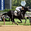 Barely Impazible - Maiden win, Saratoga, August 7, 2017<br /> Coglianese Photos/Jamie Coulter