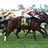 Dalarna wins the 2017 English Channel Stakes