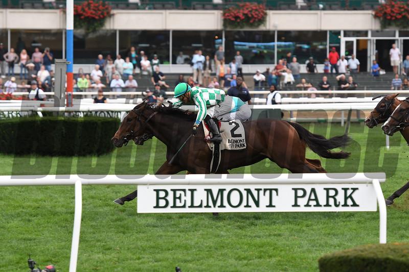 War Flag; The Flower Bowl Stakes; G1T; Belmont Park; October 8 2017; Jose Ortiz