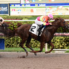 Eight Town - AOC, Gulfstream Park, December 7, 2017<br /> Coglianese Photos/Leslie Martin