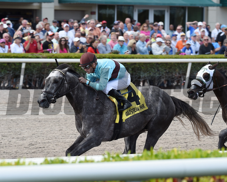 Bird Song wins the 2017 Fred W. Hooper Stakes<br /> Coglianese Photos/Lauren King