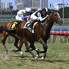 War Correspondent wins the Miami Mile Stakes (G3T) at Gulfstream Park on April 29 2017