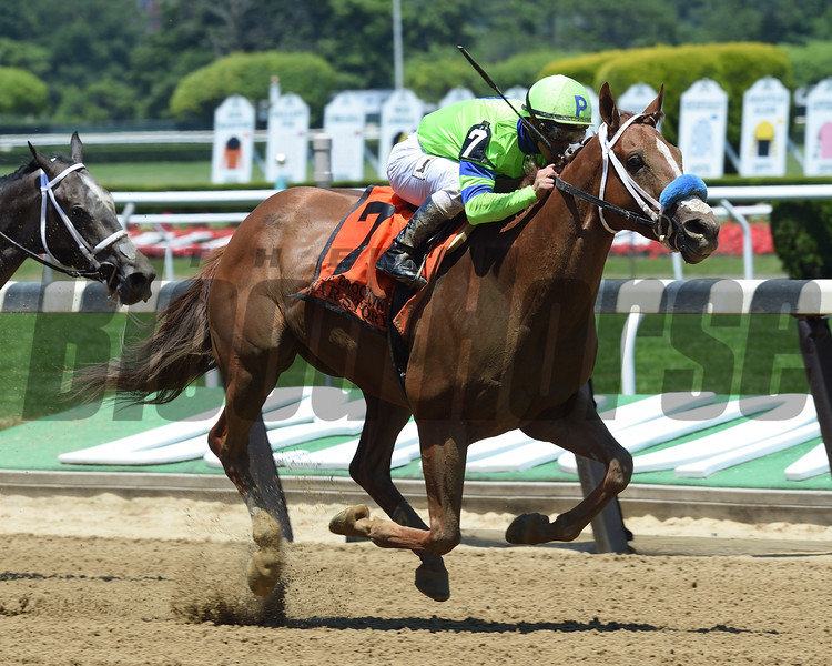 War Story wins the 2017 Brooklyn Invitational<br /> Coglianese Photos/David Alcosser