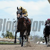 Diamond Oops wins the 2017 Kiss a Native Stakes<br /> Coglianese Photos