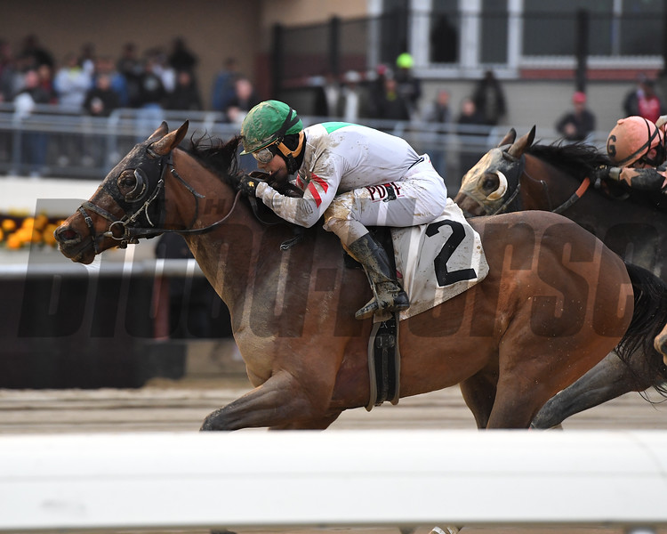 Do Share wins the 2017 Gravesend Stakes<br /> Coglianese Photos/Joe Labozzetta