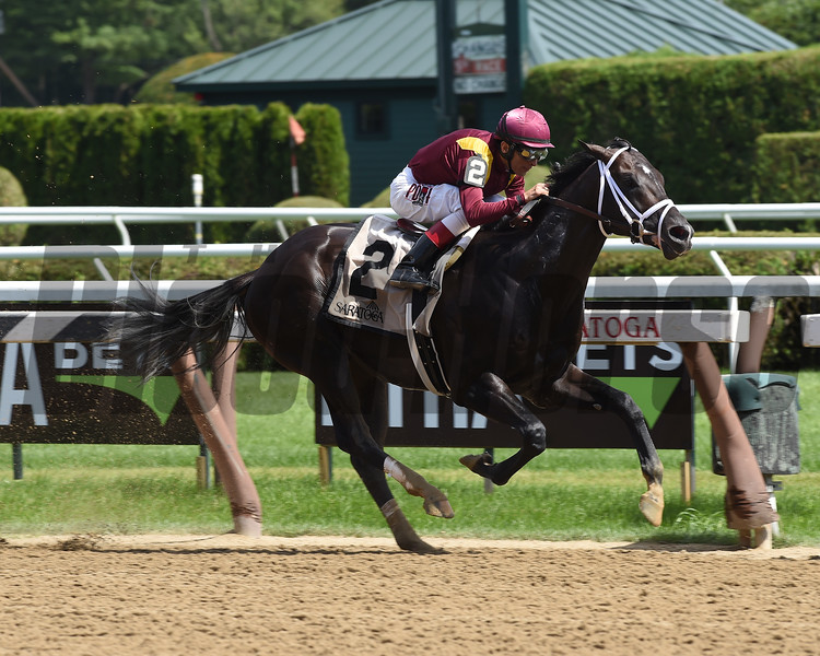 Coal Front wins the 2017 Amsterdam<br /> Coglianese Photos