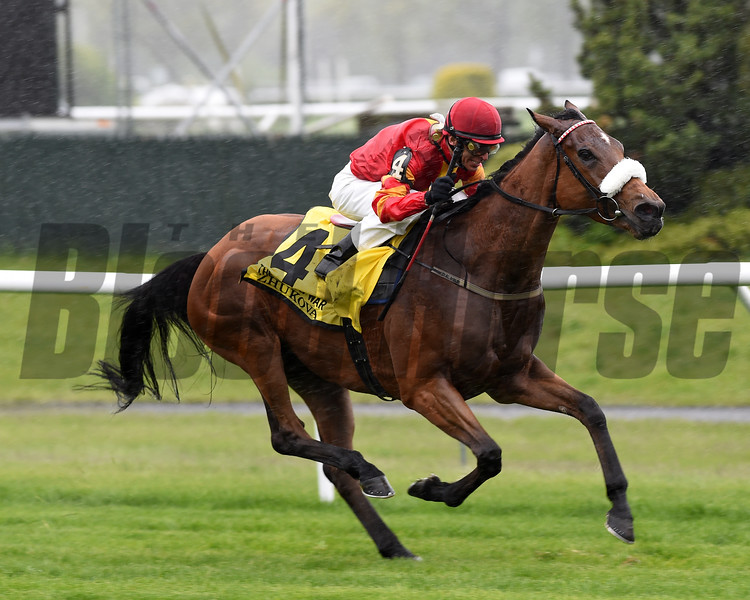 Zhukova wins the 2017 Man o' War.<br /> Coglianese Photos