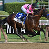 West Coast wins the 2017 Travers Stakes<br /> Coglianese Photos/Lauren King