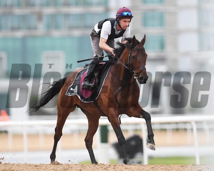 Dubai World Cup -Morning works 3/24/17, photo by Mathea Kelley/Dubai Racing Club<br /> Washington DC, AL Quoz Sprint