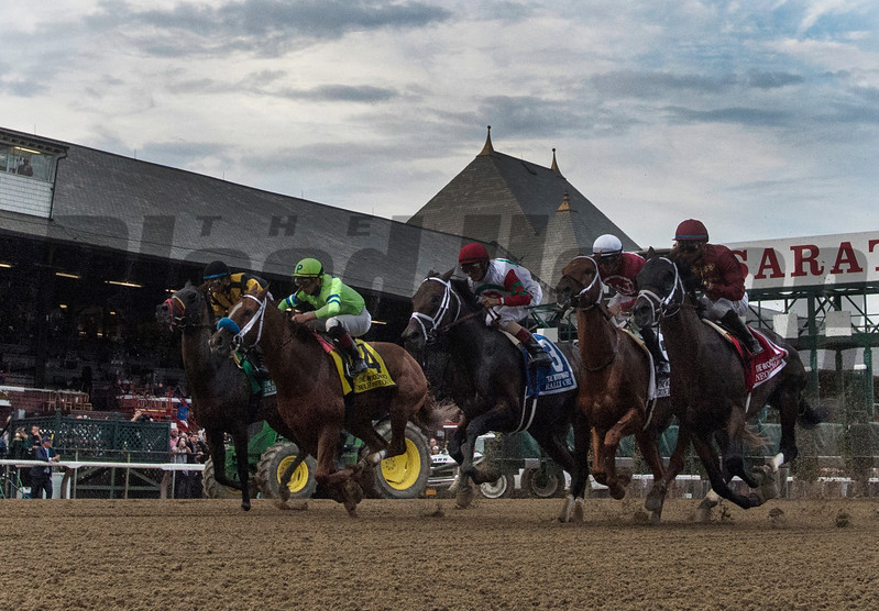 The field breaks the gate and heads for the for the clubhouse turn in the 64th running of The Woodward presented by NYRA Bets Saturday Sept. 1, 2017 at the Saratoga Race Course in Saratoga Springs, N.Y. (Skip Dickstein