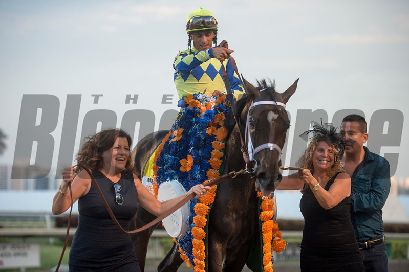 Always Dreaming with Johnny Velazquez  up Wins The Florida Derby at Gulfstream Park April 1 2017 With Vinny & Theresa Viloa
