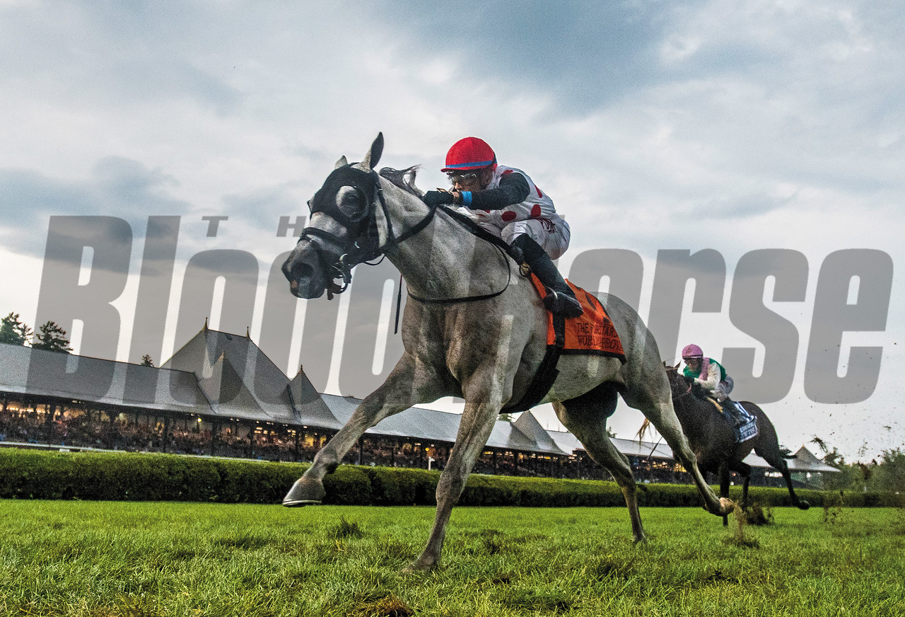 World Approval with jockey Manuel Franco bypasses the field to win the 33rd running of The Fourstardave at the Saratoga Race  Course Aug. 12, 2017  in Saratoga Springs, N.Y.  (Skip Dickstein