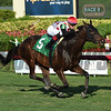 He's Bankable - Maiden Win, Gulfstream Park, December 29, 2017<br /> Coglianese Photos/Lauren King
