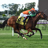 Rubilinda wins the 2017 Christiecat Stakes<br /> Coglianese Photos