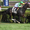 Bar of Gold wins the 2017 Yaddo Stakes<br /> Coglianese Photos/Joe Labozzetta