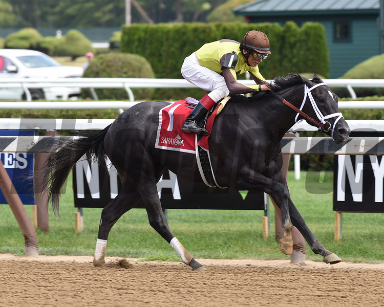 Pure Silver wins the 2017 Adirondack<br /> Coglianese Photos