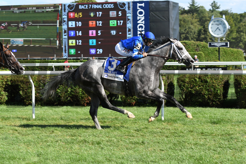 Zennor wins the 2017 Fasig-Tipton Lure Stakes<br /> Coglianese Photos/Annette Jasko