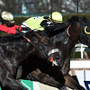 #7 Green Gratto with jockey Chris DeCarlo aboard holds off a late rally from favorite #8 Unified with jockey Javier Castellano in the 117th running of the Grade 1 Carter  at Aqueduct Race Track Saturday April 8, 2017 in Ozone Park, N.Y.  Photo by Skip Dickstein