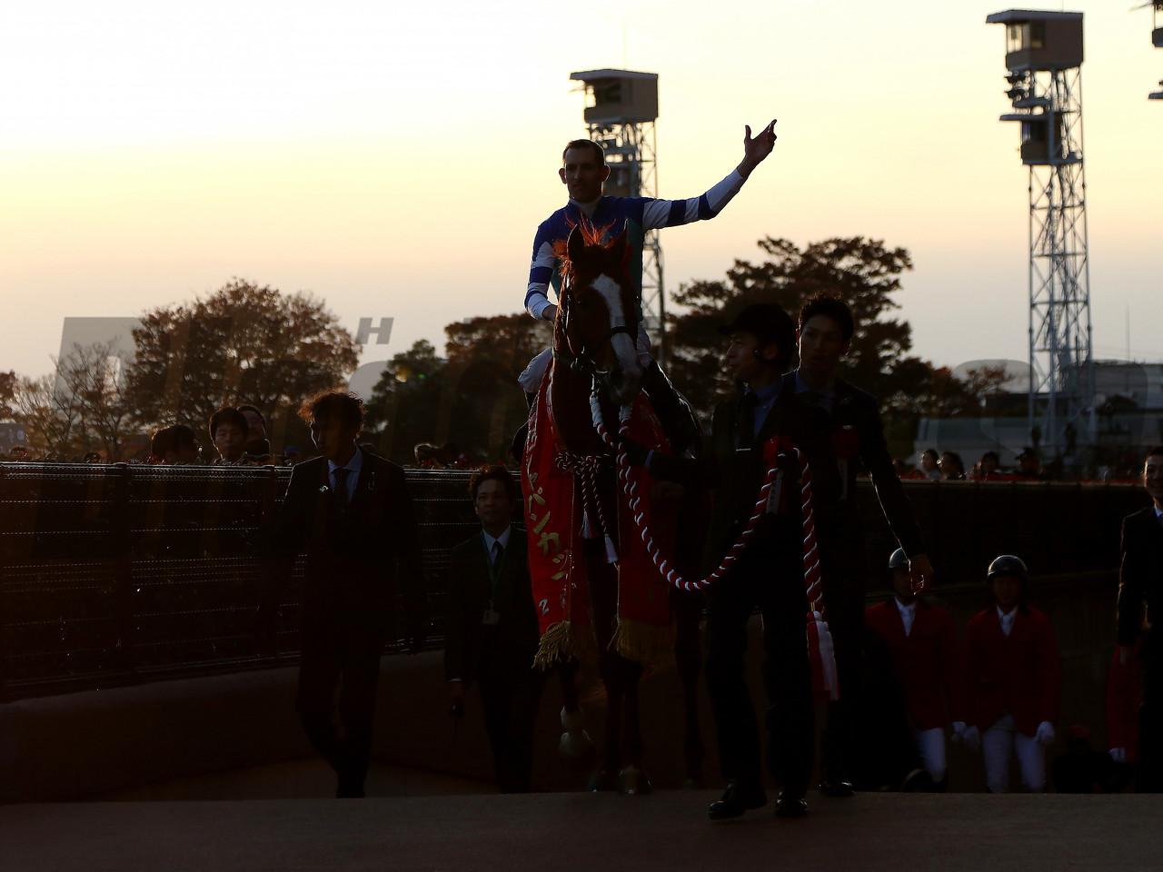 Cheval Grand, Hugh Bowman, Japan Cup, G1, Tokyo Racecourse, November 26 2017