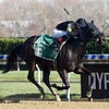 I Still Miss You wins the 2017 Key Cents Stakes<br /> Coglianese Photos/Chelsea Durand