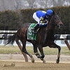 Bluegrass Flag wins the 2017 Cicada Stakes<br /> Coglianese Photos/Robert Mauhar