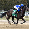 Bluegrass Flag wins the 2017 Cicada Stakes<br /> Coglianese Photos