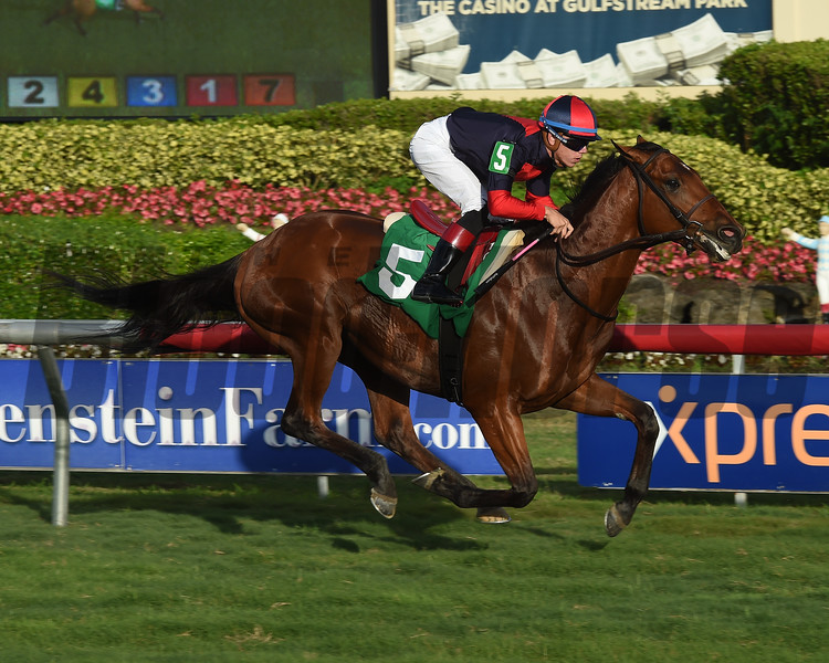 Fast Boat Maiden Win, Gulfstream Park, December 8, 2017<br /> Coglianese Photos/Leslie Martin
