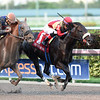 Unified wins the 2017 Gulfstream Park Sprint <br /> Coglianese Photos/Lauren King