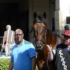 Shaman Ghost - Gulfstream Park, January 26, 2017<br /> Coglianese Photos