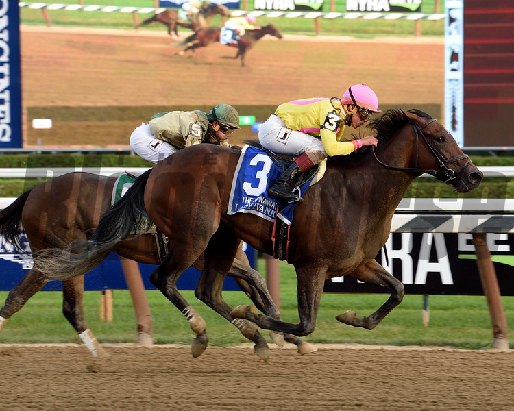 Lady Ivanka wins the 2017 Spinaway<br /> Coglianese Photos/Susie Raisher