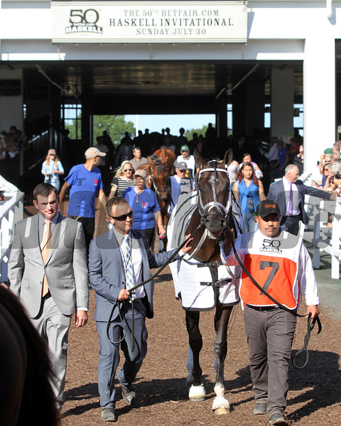 Girvin heads into the paddock prior to winning the 50th Running of the Haskell Invitational (GI) at Monmouth Park on July 30, 2017. Photo By: Chad B. Harmon