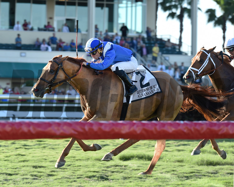 Almanaar wins the 2017 Gulfstream Park Turf Handicap<br /> Coglianese Photos/Kenny Martin