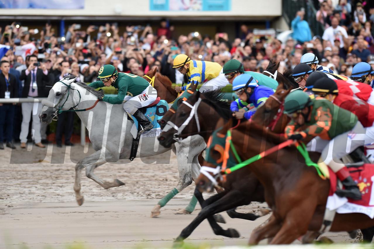 Jala Jala, $300,000, Caribbean Classic Stakes, Gulfstream Park, December 9 2017