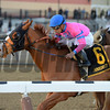 Hot City Girl wins the 2017 Broadway Stakes<br /> Coglianese Photos/Joe Labozzetta