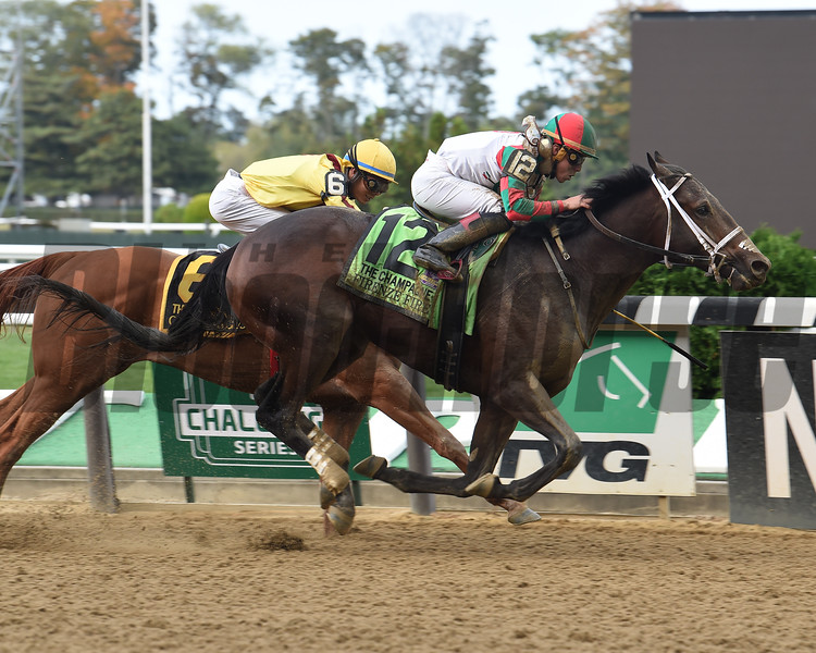 Firenze Fire wins the 2017 Champagne Stakes<br /> Coglianese Photos/Susie Raisher