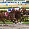 El Tigre Mono wins the 2017 Copa Confraternidad<br /> Coglianese Photos/Leslie Martin