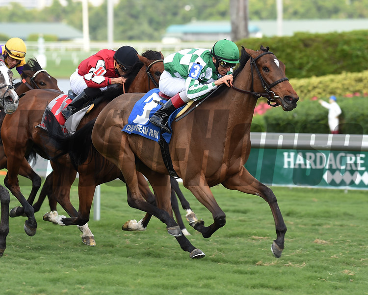 Dream Awhile wins the 2017 Tropical Park Oaks - Division One<br /> Coglianese Photos/Lauren King