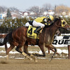 Candid Desire wins the 2017 Hollie Hughes Stakes<br /> Coglianese Photos