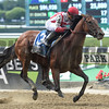 Practical Joke wins the 2017 Dwyer.<br /> Coglianese Photos