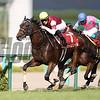 Fine Needle wins the 2017 Centaur Stakes (JPN-2)