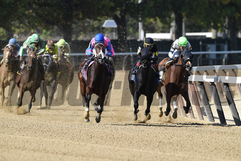 Berning Rose wins the 2017 Maid of the Mist Stakes<br /> Coglianese Photos/Robert Mauhar