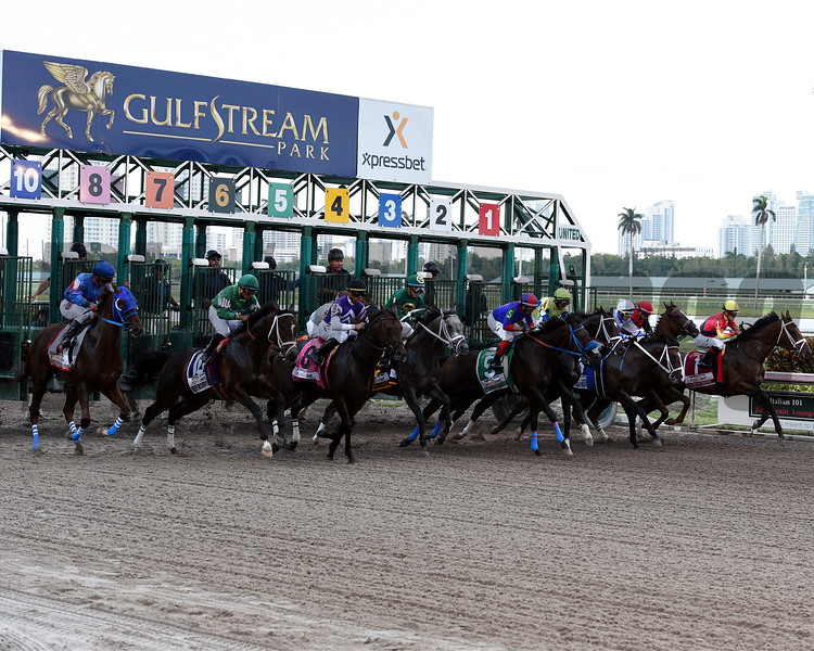 Start of the 2017 Florida Derby<br /> Dave Harmon Photo