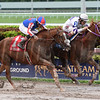 El Tigre Mono wins the 2017 Copa Confraternidad<br /> Coglianese Photos