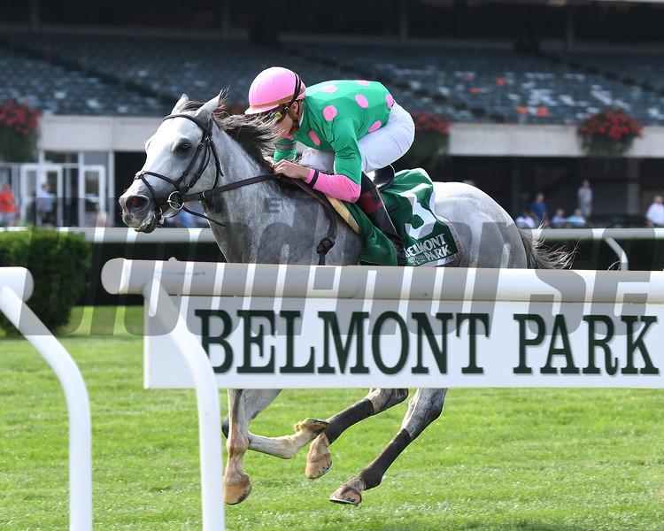 Disco Partner wins the 2017 Belmont Turf Sprint Invitational <br /> Coglianese Photos/Annette Jasko