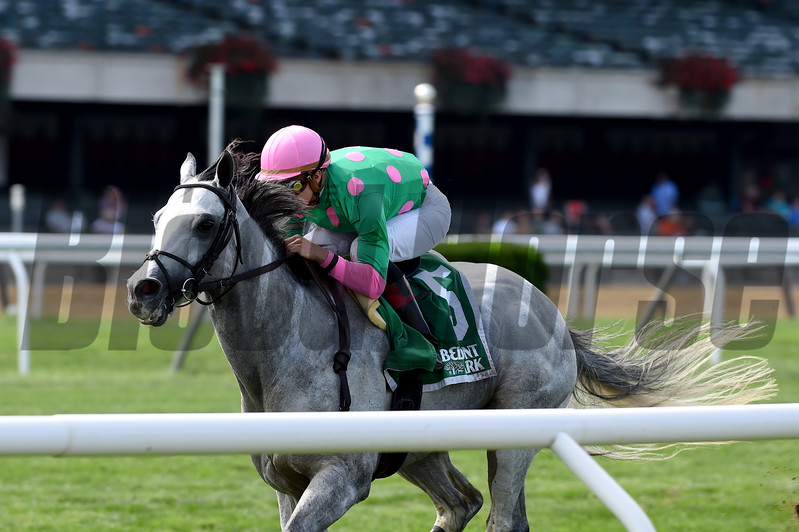 Disco Partner wins the 2017 Belmont Turf Sprint Invitational <br /> Coglianese Photos/Chelsea Durand