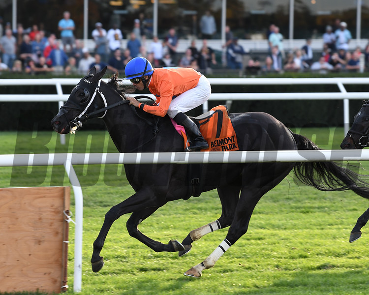Black Tide wins the 2017 Mohawk<br /> Coglianese Photos/Annette Jasko