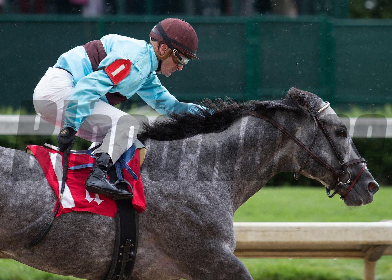 Bird Song and Julien Leparoux winning the The Alysheba on Friday, May 5th, 2017 at Churchill Downs.