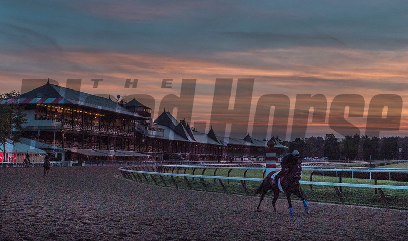 A horse gallops before sunrise of August 17, 2017 on the main track at the Saratoga Race Course in Saratoga Springs, N.Y.  Photo by Skip Dickstein
