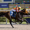 Curlin's Approval wins the 2017 Hurricane Bertie Stakes<br /> Coglianese Photos/Viola Jasko