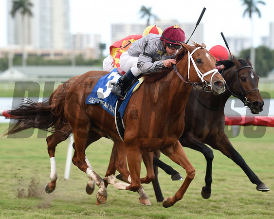 Sandiva wins the 2017 Marshua's River Stakes<br /> Coglianese Photos/Lauren King